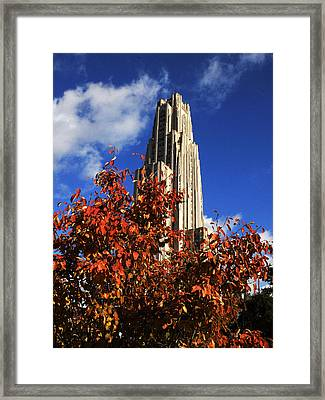 Pittsburgh Autumn Leaves At The Cathedral Of Learning Framed Print by Will Babin