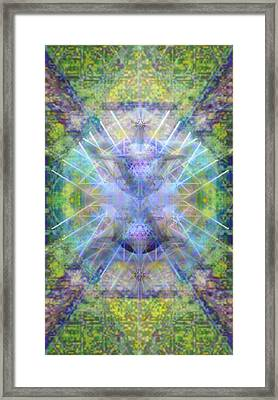 Pivortexspheres In Chalicell Garden Of Light Framed Print