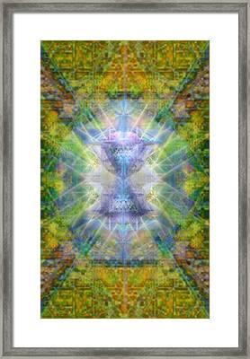 Pivortexspheres Lt On Chalicell Garden Tapestry Iv Framed Print by Christopher Pringer