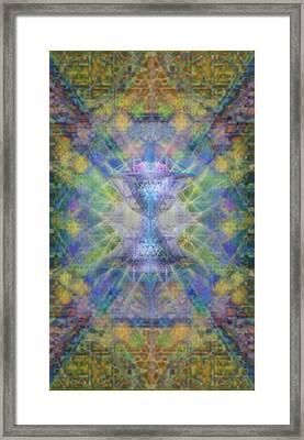 Pivortexspheres On Chalicell Garden Tapestry Ivb Framed Print