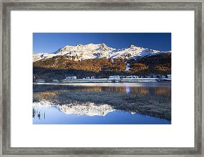 Piz Corvatsch In Bernina Range With Sils Im Engadin Reflecting In Lake Sils, Engadin, Switzerland Framed Print by F. Lukasseck