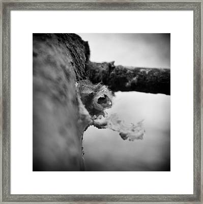 Places I Used To Live 2 Framed Print by Nathan Larson