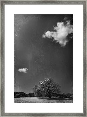 Places We Remember Framed Print by Laurie Search