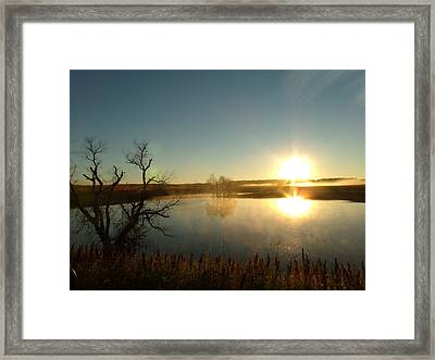Placid Glass Lake At Dawn Framed Print by Brian  Maloney