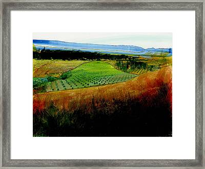 Plain De Rousette Framed Print by David Bates