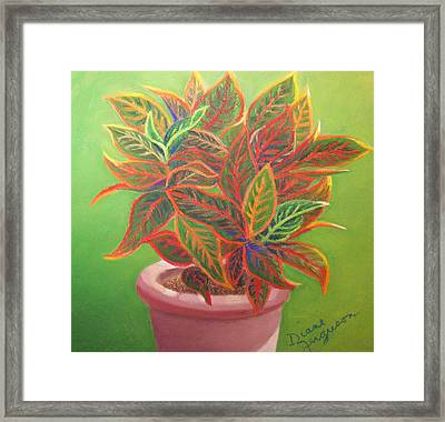 Plant Portrait II Framed Print