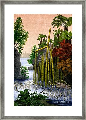 Plants Of The Triassic Period Framed Print by Science Source