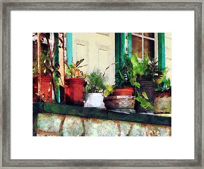 Plants On Porch Framed Print by Susan Savad