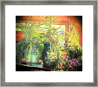 Plants Framed Print by YoMamaBird Rhonda