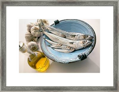 Plate Of Mackerel Framed Print by Erika Craddock