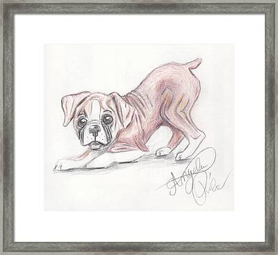 Play With Me Framed Print by Angela Pike