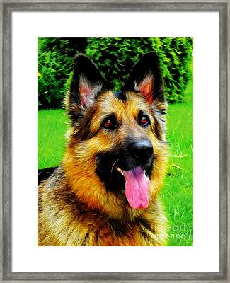 Play With Me Framed Print by Mariola Bitner