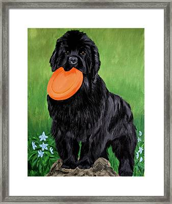 Play With Me Framed Print
