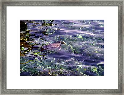 playing at Crete Framed Print