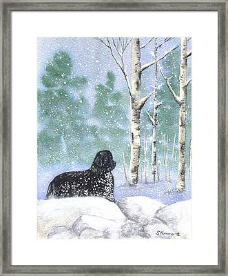 Playing In The Blizzard Framed Print by Sharon Nummer