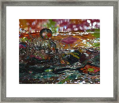 Playtime Framed Print by Billie-Jo Miller