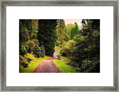 Pleasant Path. Benmore Botanical Garden. Scotland Framed Print by Jenny Rainbow