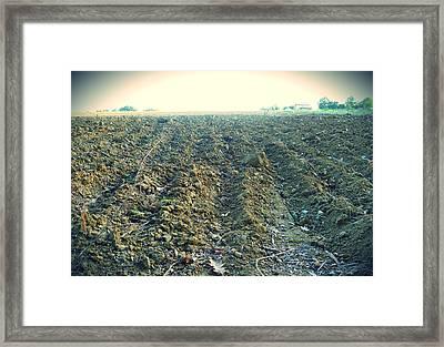 Plow Framed Print by Sandrine Pelissier