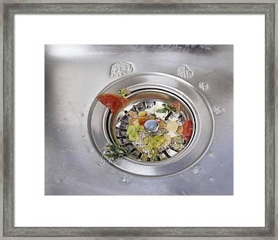 Plughole Food Trap Framed Print by Carlos Dominguez
