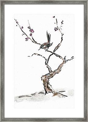 Plum Blossoms Framed Print by Ellen Miffitt