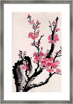 Plum Blossoms Iv Framed Print by Yolanda Koh