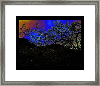 Framed Print featuring the photograph Plum Grove At Dusk by Susanne Still