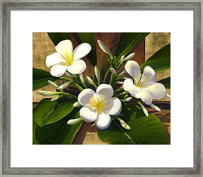 Plumeria Framed Print by Anne Wertheim