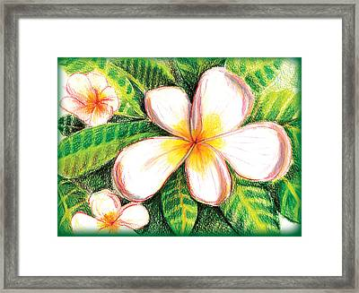 Plumeria With Foliage Framed Print