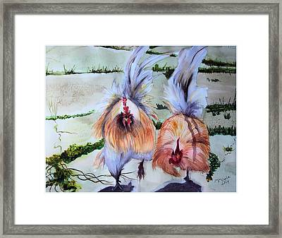 Plump Chickens Framed Print by Myrna Migala