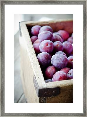 Plums Framed Print by Marju Randmer