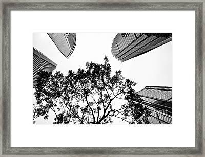 Plus One Framed Print