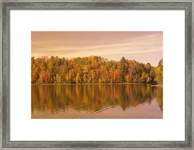 Plush Leaves And Wispy Clouds Framed Print by Elijah Brook