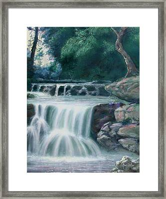 Pocono Mountains Waterfall Framed Print