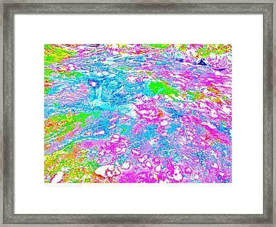 Poetic Brook 89 Framed Print