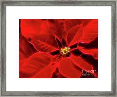 Poinsettia Red Christmas Flower Abstract Artwork Framed Print by Oleksiy Maksymenko