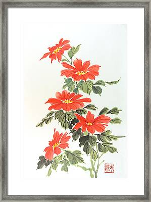 Poinsettias Framed Print by Yolanda Koh