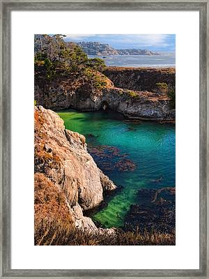 Point Lobos State Reserve California Framed Print by Utah Images
