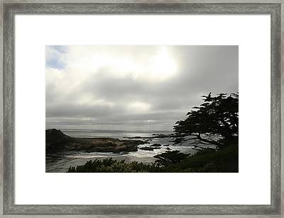 Point Lobos View Framed Print by Suzanne Lorenz
