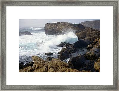 Point Lobos Whale Rock Framed Print