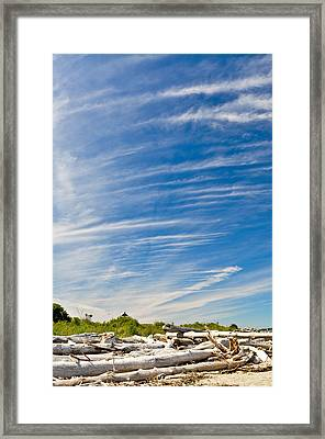Framed Print featuring the photograph Point No Point With Driftwood by Ronda Broatch