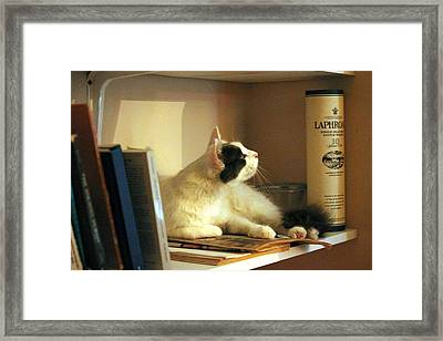 Framed Print featuring the photograph Poker by Rdr Creative