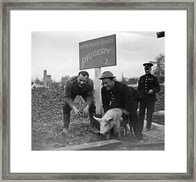 Police Pig Club Framed Print