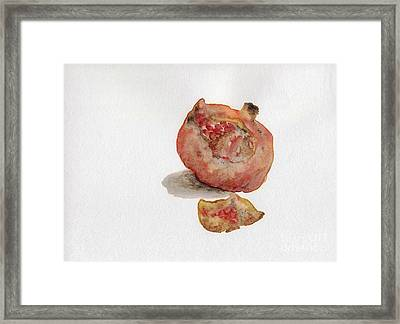 Pomegranate  Framed Print by Annemeet Hasidi- van der Leij