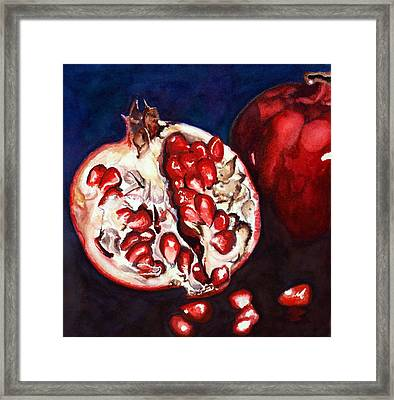 Pomegranate Study Number Two Framed Print