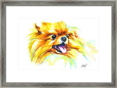 Pomeranian Fire Framed Print
