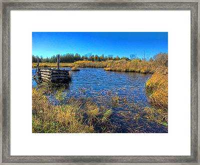 Pond 1 Today.psd Framed Print