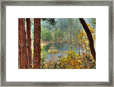 Pond At Golden Or. Framed Print by Jim Adams