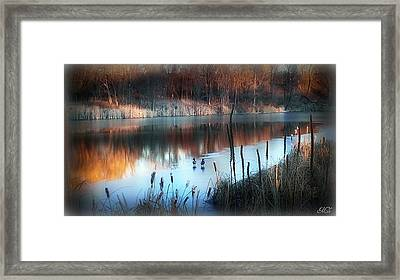 Pond Creek Framed Print by Michelle Frizzell-Thompson