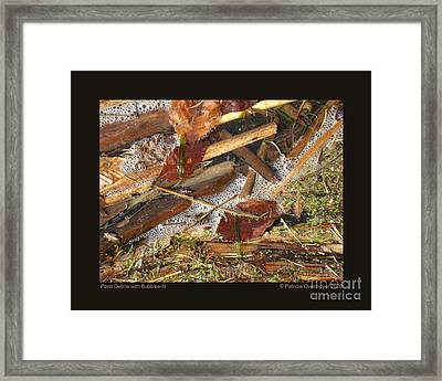 Pond Debris With Bubbles-iii Framed Print