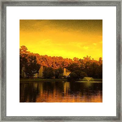 Pond Framed Print by Katie Williams